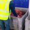 La Guardia Civil desmantela en Jumilla un grupo criminal dedicado al robo con fuerza y hurto de cable de cobre