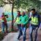 La Operación Arcángel incauta en Jumilla 400 plantas de marihuana