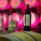 """'Alma de Luzón', un vino que une """"las emociones con los sentidos"""""""