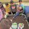 Alumnos de la Asunción plantan coles, brócoli y habas en su huerto