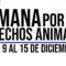 4 Patas celebra con varias iniciativas el Día de los Derechos de los Animales