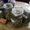 Desmantelado en Jumilla un local de cultivo y venta de cannabis