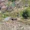 IU Verdes propone un Plan Director de Aguas Pluviales del Casco Urbano