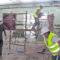 Se contrata a 5 desempleados para mantenimiento de espacios públicos