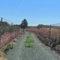IUVerdes lamenta el estado de unos caminos asfaltados en febrero