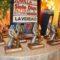 Siete Días Jumilla entregará sus premios el domingo 30 de agosto