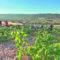 """La vendimia en Jumilla se adelanta dos semanas debido a las """"altísimas temperaturas"""""""
