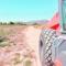 Agricultura continúa con el acondicionamiento y mejora de caminos en zonas del Prado