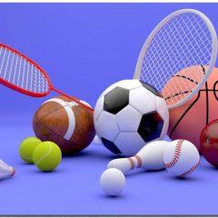 Finalmente se aprueban 18.736 euros para el desarrollo de actividades deportivas