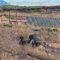 IU-Verdes demanda el desmantelamiento de la antigua planta de basuras