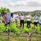 El IMIDA trabaja en la búsqueda de uva para vino sin pepita y que resista la sequía y enfermedades