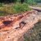 La lluvia del pasado sábado descargó hasta 60 litros por metro cuadrado