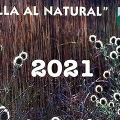 Stipa solicita fotografías para su calendario «Jumilla al natural» 2022