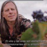 Ken Stringfellow, músico de REM cuenta, en un documental, su experiencia en la DOP Jumilla