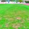 IU-V denuncia incumplimientos en el servicio de gestión de jardines