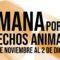 4 Patas conmemorará el Día Internacional de los Animales