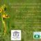 Stipa invita a conocer la flora silvestre del municipio de Jumilla