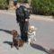 La Policía Local de Jumilla se une a las labores de búsqueda del niño Gabriel Cruz en Níjar