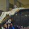 Los niños se hacen cargo de portar al Cristo de la Reja en su traslado
