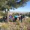 Veinte personas conocieron la flora de Jumilla en un taller de Stipa