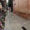 Los domingos 20 y 27 de octubre van a tener lugar unas visitas guiadas al Cementerio de Jumilla