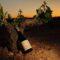 La Guía Peñín da la 'excelencia' a dos de los nuevos vinos de Ribera del Juá
