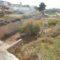 La Confederación Hidrográfica está limpiando la Rambla del Judío